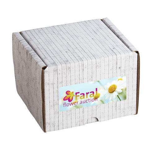 Gift Box boîte prête à l'envoi